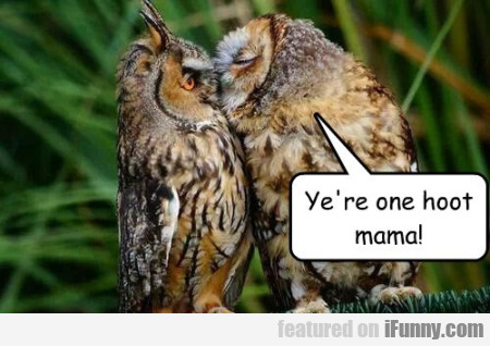 You're One Hoot Mama