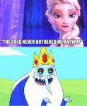 The Cold Never Bothered Me Anyway...