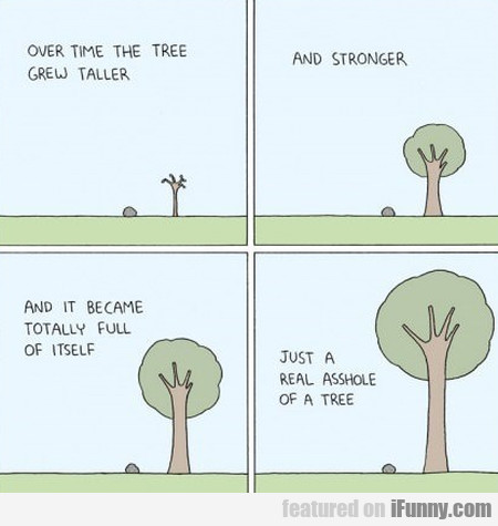 over time the tree grew taller