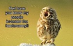 Owl Have You Know My People Invented