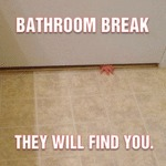 Bathroom Break, They Will Find You...