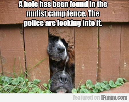 A Hole Has Been Found In The Nudist Camp...