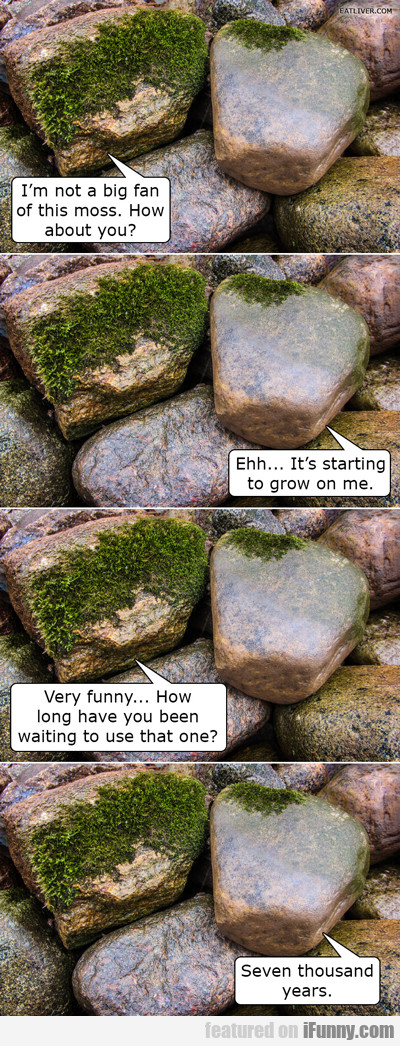 i'm not a big fan of this moss...