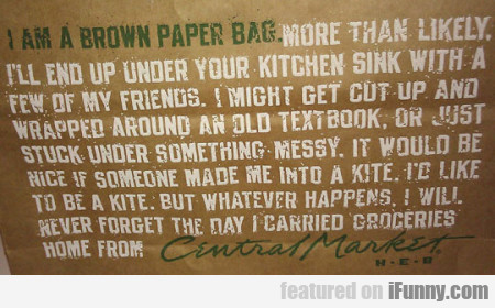 I Am A Brown Paper Bag. More Than Likely...