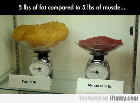 5 Lbs Of Fat Compared To 5 Pounds Of Muscle...