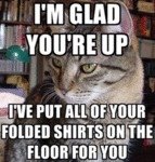 I'm Glad You're Up. I've Put All Of Your Folded...