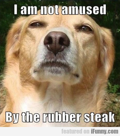 I Am Not Amused By The Rubber Steak