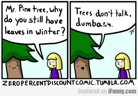 Mr. Pinetree, Why Do You Still Have Leaves In...