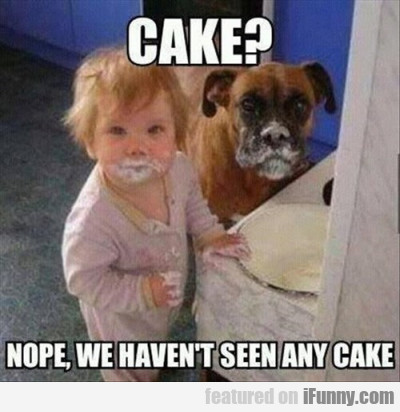 Cake? Nope, We Haven't Seen Any Cake