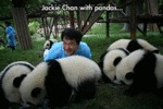 Jackie Chan With Pandas...