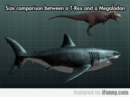 Size Comparison Between A T-rex And...