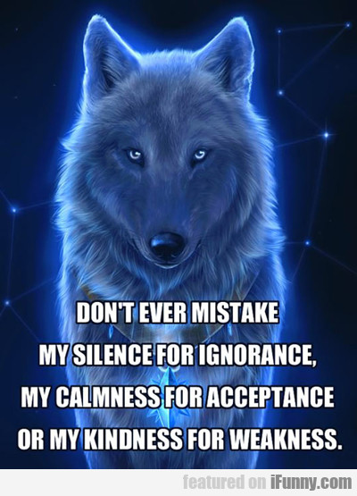 Don't Ever Mistake My Silence...