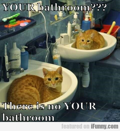 Your Bathroom? There Is No Your Bathroom