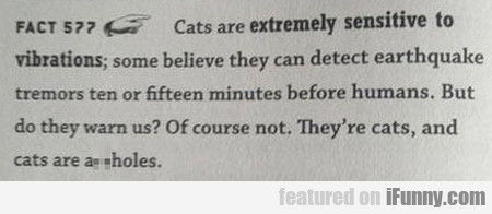 Cats are extremely sensitive to vibrations; some..