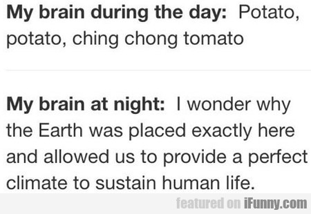 My Brain During The Day: Potato, Potato, Ching...