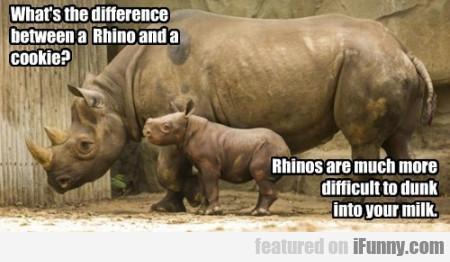 What's The Difference Between A Rhino And A Cookie
