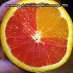 Percentage Of This Orange That Is Orange...