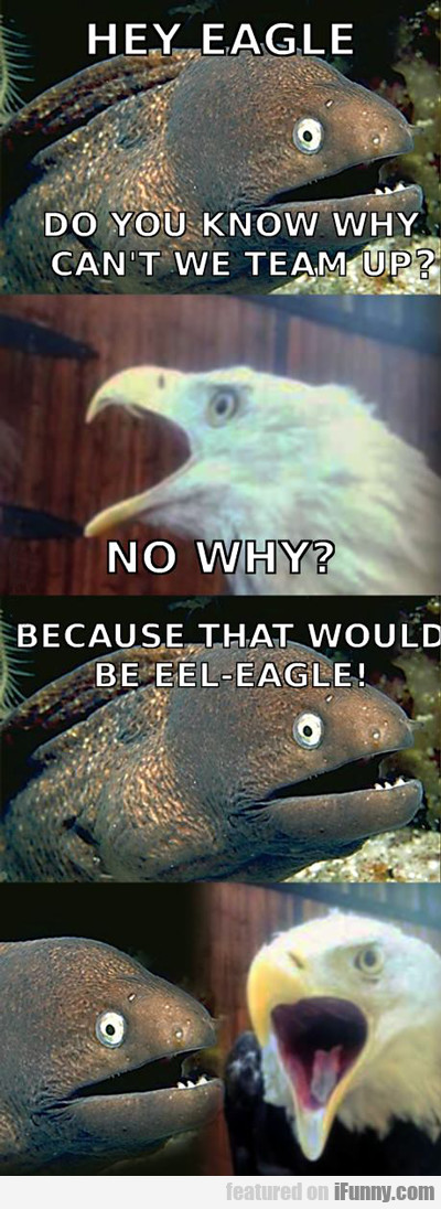 Hey Eagle, Do You Know Why We Can't Team Up?