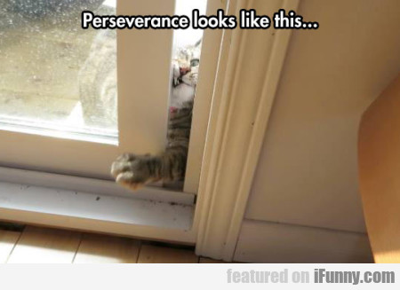 Perseverance Looks Like This..