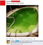 Why Is Our Pool This Color?