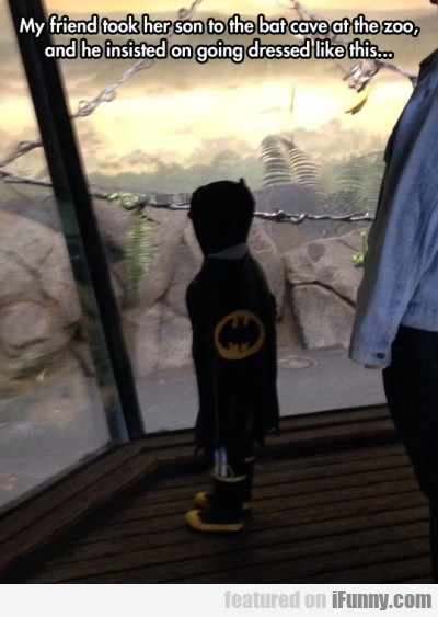 My friend took his son to the bat cave at the zoo