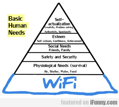 Basic Human Needs: Wif...