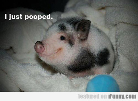 I Just Pooped...