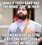 What If Every Band Had The Word Gay In Them...