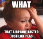 What That Airplane Tasted Like Peas