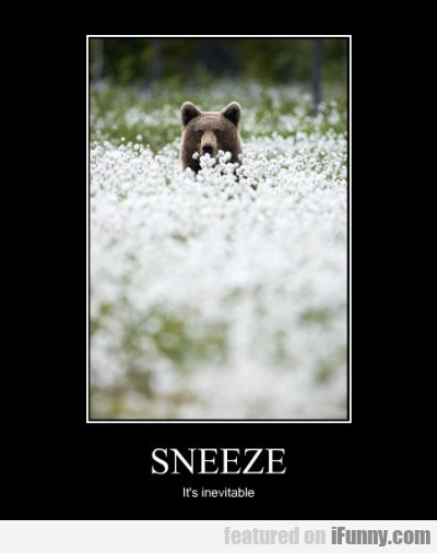 Sneeze It's Inevitable