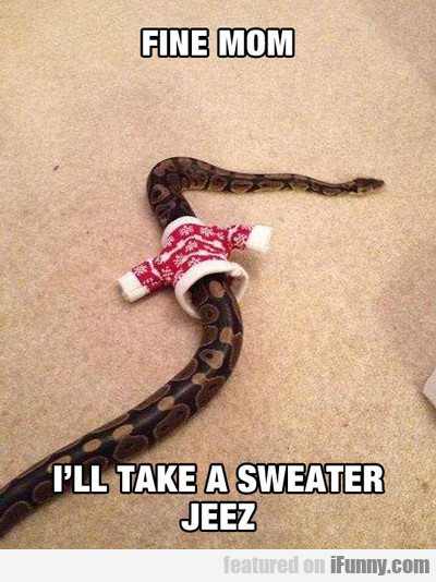 Fine Mom, I'll Take A Sweater...
