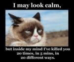 I May Look Calm, But Inside My Mind
