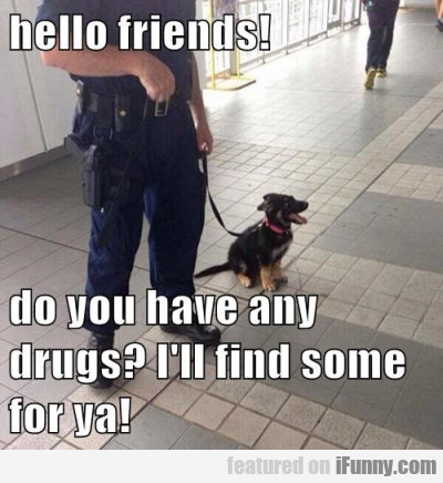 Hello Friends! Do You Have Any Drugs I'll Find..
