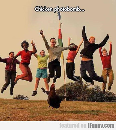 Chicken Photobomb...