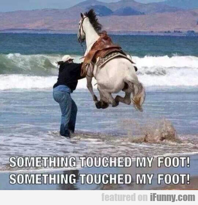 Something Touched My Foot! Something Touched..