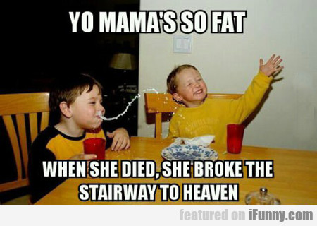 Yo Mama's So Fat, When She Died She Broke The...