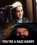 You're A Nazi Harry...