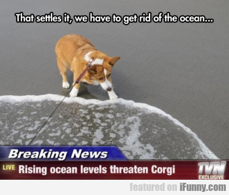 that settles it, we have to get rid of ocean