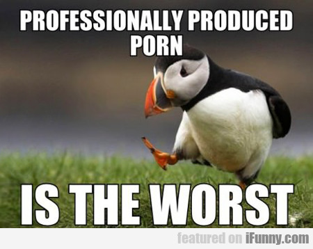 Professionally Produced Porn In The Worst...