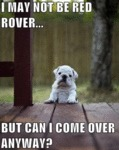 I May Not Be Red Rover But Can I Come Over..