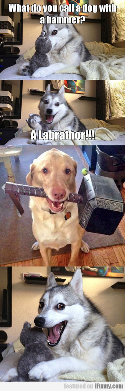 What Do You Call A Dog With A Hammer?