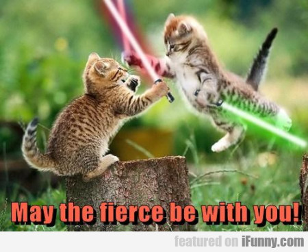 May The Fierce Be With You!