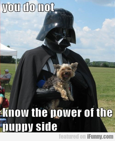 You Do Not Know The Power Of The Puppy Side