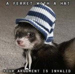 A Ferret With A Hat - Your Argument Is Invalid