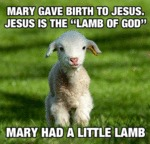 Mary Gave Birth To Jesus. Jesus Is The Lamb Of...