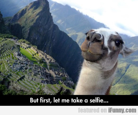 But First, Let Me Take A Selfie...