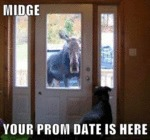 Midge Your Prom Date Is Here