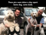 These Pics Were Take A Day Apart. Same Dog...