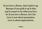 If You Love A Flower Don't Pick It Up. Because...