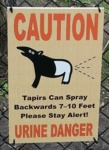 Caution, Tapirs Can Spray Bakwards...